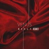 Venus de Nesly
