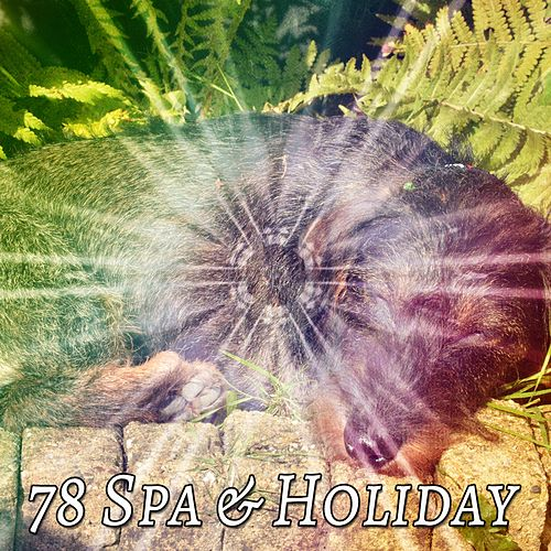 78 Spa & Holiday by Spa Relaxation