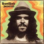 Jacoozzi de Brant Bjork