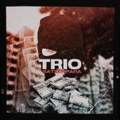 Batzen Para von Trio
