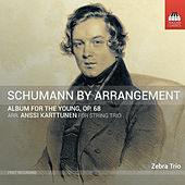 R. Schumann: Album for the Young, Op. 68 (Arr. A. Karttunen for String Trio) de Anssi Karttunen