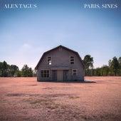 Paris, Sines by Alen Tagus