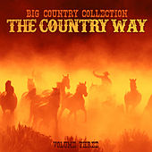 Big Country Collection: The Country Way, Vol. 3 de Various Artists
