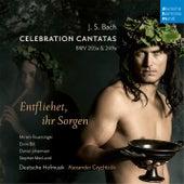 Entfliehet, verschwindet, entweichet, ihr Sorgen, BWV 249a/V. Hunderttausend Schmeicheleien (Aria) de Alexander Grychtolik