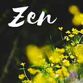 Zen CD - Pure Sounds of Nature Mp3 Collection with Musical Background von Pure Massage Music