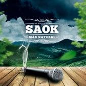 Mas Natural de Saok
