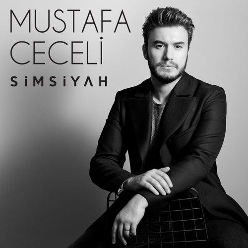 Simsiyah van Mustafa Ceceli