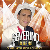 O Melhor do Forronejo by Severino Do Ramo