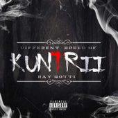 Different Breed of Kuntrii de Ray Gotti