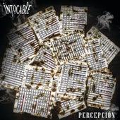 Percepción by Intocable