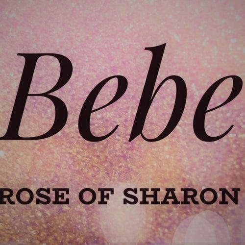 Rose of Sharon de Bebe