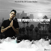 The Perfect Prescription de Young Sam
