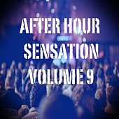 After Hour Sensation, Vol.9 (Best Selection of Clubbing House and Tech House Tracks) by Various Artists