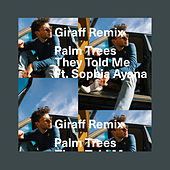 They Told Me (Remix) by Palm Trees