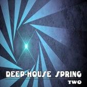 Deep-House Spring, Two de Various Artists
