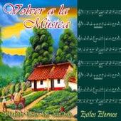 Volver a la Música  (Exitos Eternos) de German Garcia