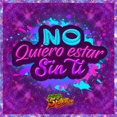 No Quiero Estar Sin Ti de Sonora 5 Estrellas