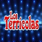 Llorarás / Te Juro Que Te Amo / Luto de Mi Alma by Los Terricolas