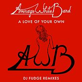 A Love of Your Own (DJ Fudge Remix) de Average White Band