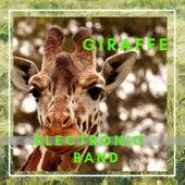 Giraffe Electronic Band de Various