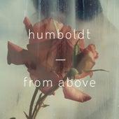 From Above de Humboldt