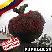 Made In Colombia: Popular Vol. 36 de Various Artists