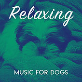 Relaxing Music for Dogs von Various Artists