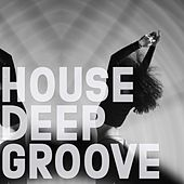 House Deep Groove by Various Artists