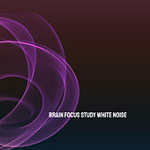 Brain Focus Study White Noise by Various Artists