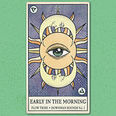 Early in the Morning by Flow Tribe