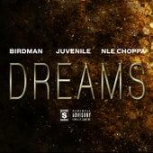 Dreams by Birdman