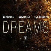 Dreams by Birdman