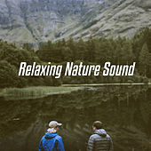 Relaxing Nature Sound by Various Artists