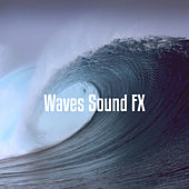 Waves Sound FX de Various Artists