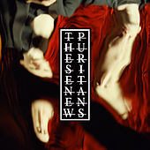 Where The Trees Are On Fire de These New Puritans