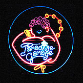 Paradise Garage de Various Artists