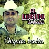 Puros Exitazos by El Lobito De Sinaloa