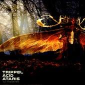 Trippel Acid Ataris by Dj tomsten