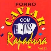 Forró Caviar Com Rapadura, Vol. 11 de Forro Caviar Com Rapadura