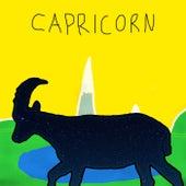 Capricorn von Andrew Applepie