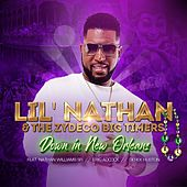 Down in New Orleans by Lil Nathan And The Zydeco Big Timers