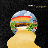 Find My Own Way von GRiZ