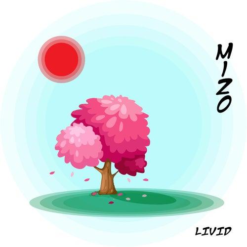 Mizo by LIVID