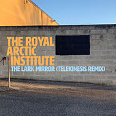 The Lark Mirror (Telekinesis Remix) by The Royal Arctic Institute