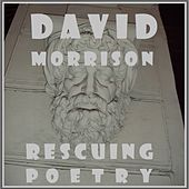 Rescuing Poetry by David Benjamin Morrison