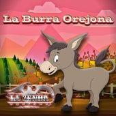 La Burra Orejona by La Zenda Norteña