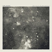Particle VI B (navigators) by Tom Adams