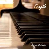 Fragile von Bernardt James