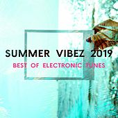Summer Vibez 2019 (Best of Electronic Tunes) von Various Artists