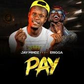 Pay de Jay Mindz